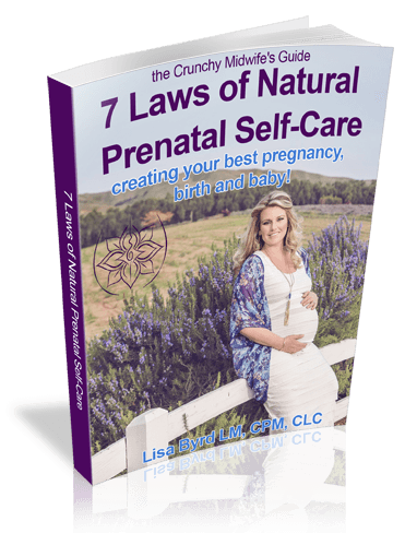 Free Natural Pregnancy Guide